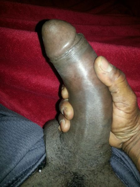 big black cock selfie - ... thick black cock